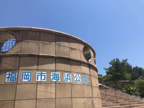 福岡市海浜公園